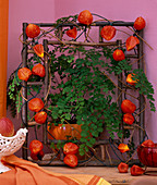 Physalis Lichterkette-. Physalis placed around wooden frame, Adiantum