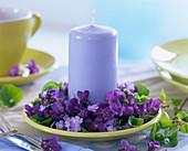 Viola odorata (fragrant violet), myosotis (forget-me-not)