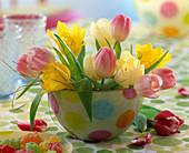 Tulipa (white, yellow and pink tulips)