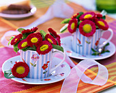 Bellis (red daisies)