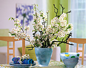 Pyrus (pear branches) in a light blue glass vase