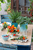 Table decoration with herbs and edible flowers