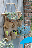 Bag for utensils with succulents and small garden tools