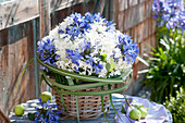 Bouquet made of hydrangea and Agapanthus