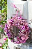 Hydrangea 'Pink Annabelle', Phlox
