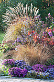 Autumn bed with perennials and grasses