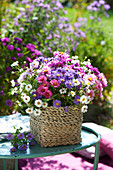 Mixed bouquet of aster in basket on side table