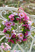 Small wreath from Aster hanged from bench back