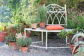 Gravel terrace with herbs and vegetables