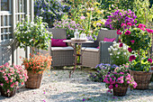 Gravel terrassse with potted plants, balcony flowers and seating
