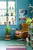 Ledersessel vor blauer Wand und einem Fenster mit Regalbrettern