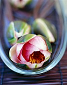 Decorative exotic flowers in a glass bowl