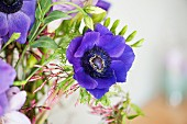Detail of bouquet with blue anemones