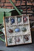 Speckled Easter eggs in display case made from old drawer