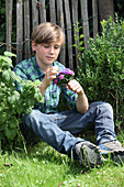 Boy holding posy of asters sitting on grass next to fence