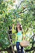Mädchen beim Apfelpflücken