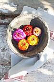 Zinnia flowers in bowl of water
