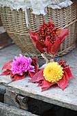 Posy of dahlias, rose hips and red Virginia creeper leaves
