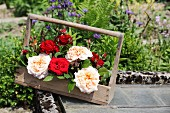 Red and pink roses in old wooden bottle carrier
