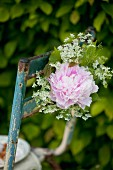 Old garden chair decorated with peony and chervil flowers