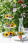 Etagere verziert mit Blüten von Sonnenblumen und Kornblumen