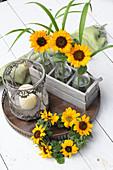Glasflaschen mit Sonnenblumen im Holzkistchen, Windlicht und Kranz aus Sonnenblumen