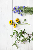 Kornblumen, Sonnenblumen und Clematisranken auf weißem Holzuntergrund