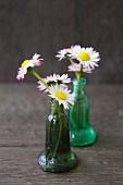Gänseblümchen in kleinen grünen Glasvasen