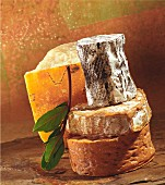 Still-life arrangement of cheeses