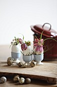 Flowers arranged in blown goose eggs in blue egg cups