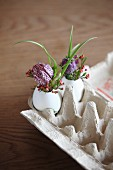 Flowers arranged in goose eggs in egg carton