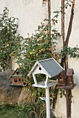 Various vintage bird feeding tables and rose hips on rosebushes against house façade