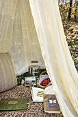 Mosquito net, food, books and watercolour painting box