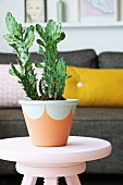 Cactus in terracotta pot painted with semicircles