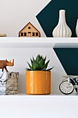 Ornaments and potted succulent on shelves on two-tone wall
