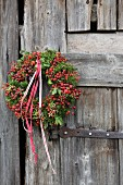 Autumn wreath of rose hips, moss and ribbons on rustic board door