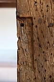 Wooden column (close-up)