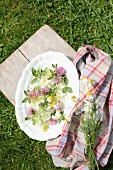 Potpourri of colourful wildflowers on white china plate on lawn