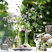 Filigrane, lilafarbene Wildblumen in Glasvasen auf gedecktem Gartentisch