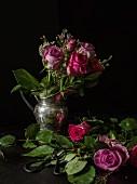 Silver jug of roses against black background