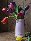 Tulips in lilac jug