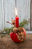 Christmas apple decorated with candle, larch cones and juniper sprig
