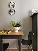Wandteller über altem Holztisch mit Gemüse und Designerstühlen