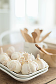 Bulbs of garlic on rectangular plates against blurred background