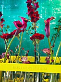 Red flowers in yellow-painted bottle crate against turquoise background
