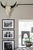 Framed black and white photos and hunting trophy on wall