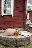 Pflanzentöpfe auf altem Mühlstein vor Schwedenhaus