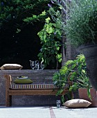 Wicker bench and plants on summery terrace