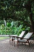 Two loungers with turned legs below tree