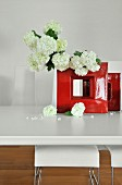 White hydrangeas in glossy red angular vase